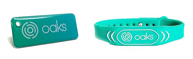 Mini Fob And Wristband Fob